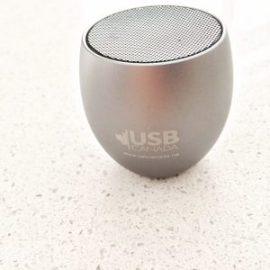 custom bluetooth speaker-BT12 - silver